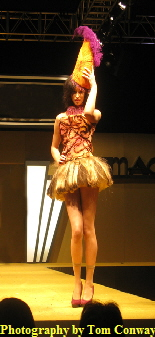 fashion model, photograph of a woman in hat and short skirt on catwalk