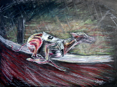 dog drawing, greyhound art, dog racing picture